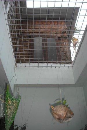 Snehadhara Homestay: !st floor room