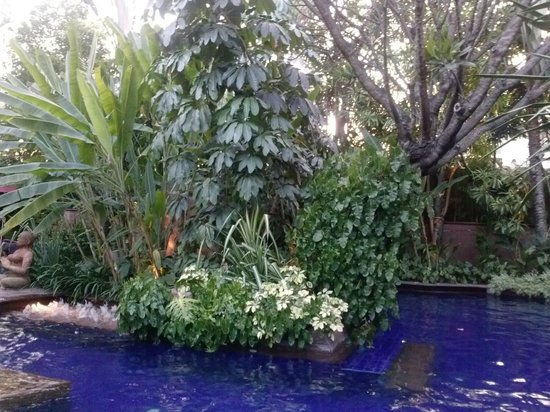 Sheraton Grande Sukhumvit, A Luxury Collection Hotel: Pool