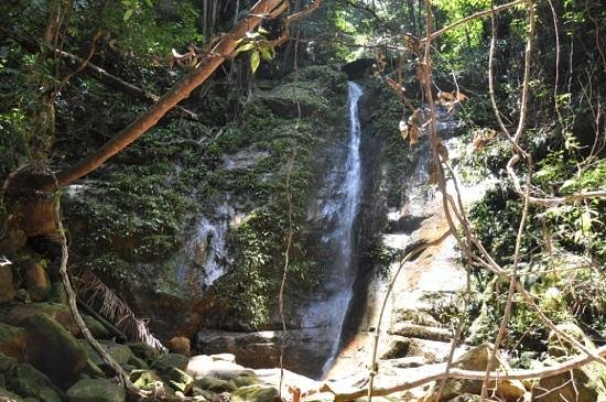 Permai Rainforest Resort: waterfall on the jungle trek