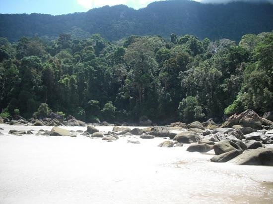 Permai Rainforest Resort: view of jungle from second beach