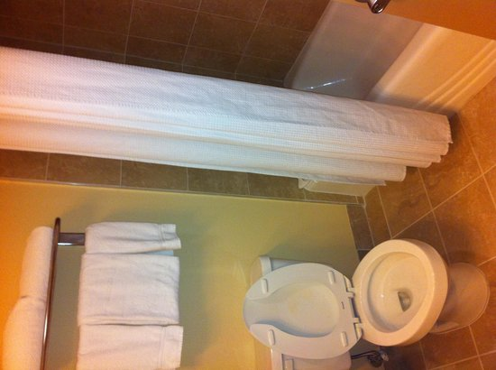 Holiday Inn Orlando International Airport: Bathroom