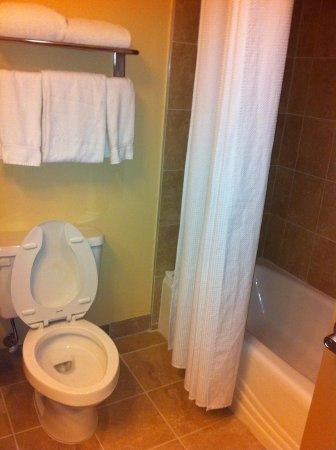 Holiday Inn - Orlando International Airport: Bathroom