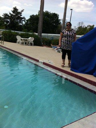Holiday Inn - Orlando International Airport: Pool