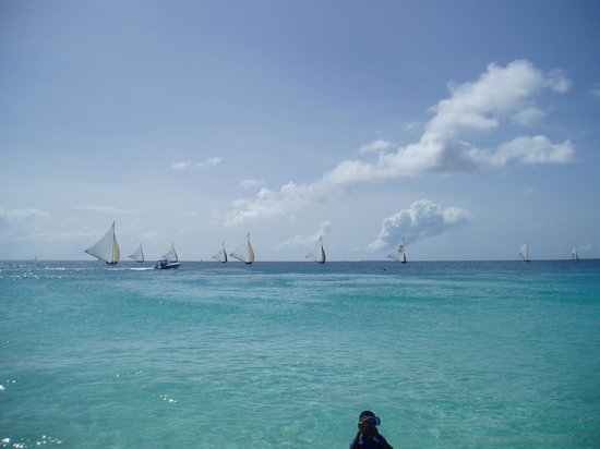 Four Seasons Resort and Residences Anguilla: Meads Bay View Boat Race