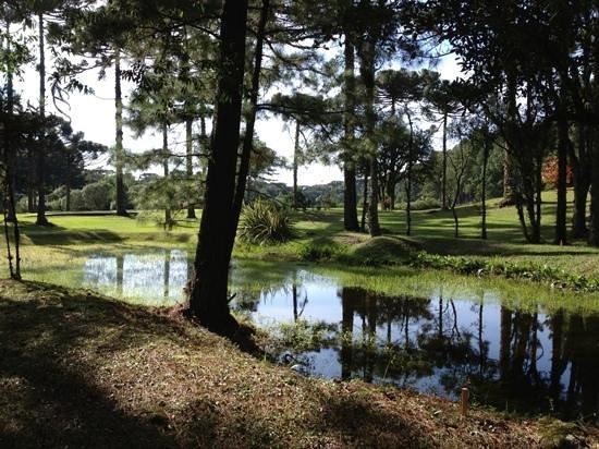 Gramado Golf Club: tee do 8