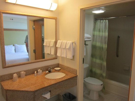 SpringHill Suites Miami Airport South: Bathroom