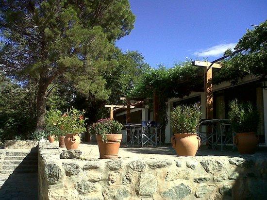 Hosteria Sol del Valle: Vista del acceso a recepción y restó