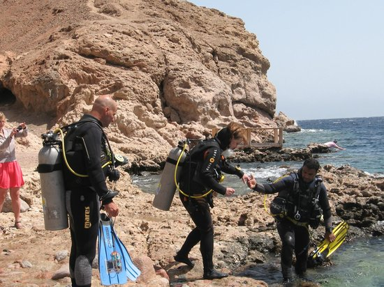 Shams Dive Centre : In we go! The Bells