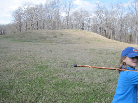 Poverty Point State Historic Site: smaller mound