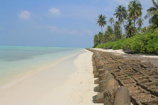 Lakshadweep Homestay Kasim K: A lonely beach strip on the Bangaram island