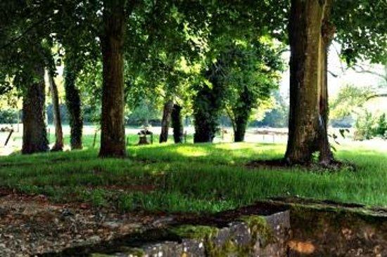 Chateau de la Vénerie : Jardin
