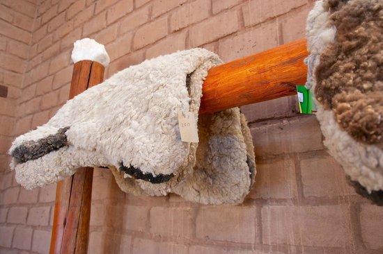 Hosteria De Altura El Penon: Detalles autóctonos