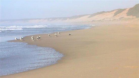 classicalView: 1 Strand Dana Bay