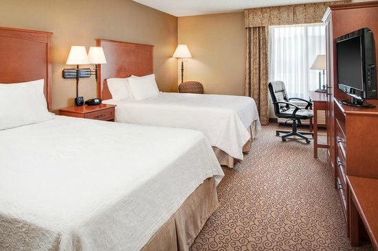 Hampton Inn Iowa City / Coralville : 2 Queen Guest Room