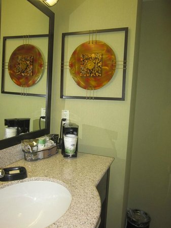 Hampton Inn and Suites Roseville: bathroom...clean and nice decor