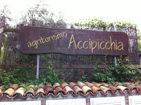 Agriturismo Accipicchia