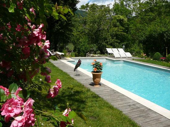 Chambre d'Hote Le Theron: La piscine