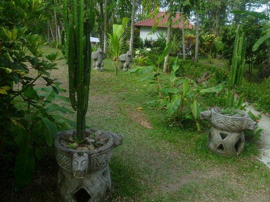 Hotel La Palapa Eco Lodge Resort: Jardines alrededor de la habitación
