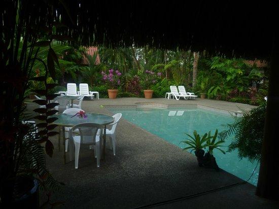 Hotel La Palapa Eco Lodge Resort: Vista de la piscina desde la Palapa