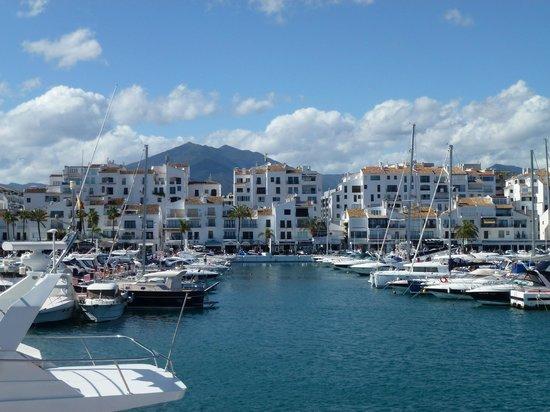 Best Restaurants In Puerto Banus Marina