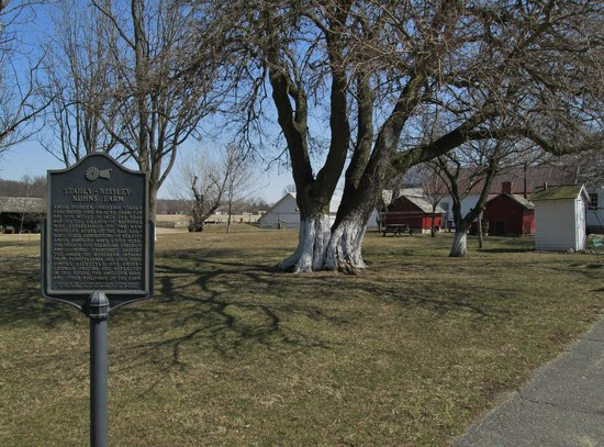 Amish Acres: Homestead Grounds