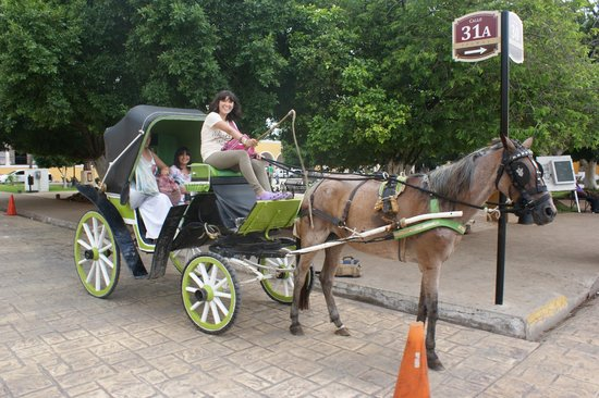 Hotel San Miguel Arcangel: Es un placer recorrer las calles en sus carruajes tirados por caballo