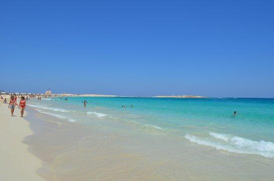 Jaz Almaza Beach Resort: spiaggia bravoclub