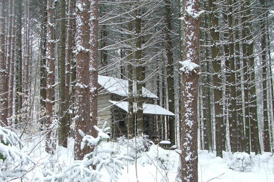 Hocking Hills Frontier Log Cabins: One of our winter visits