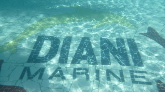 Diani Marine Divers Village: Pool