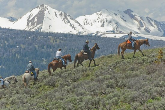 Nine Quarter Circle Ranch: An afternoon ride