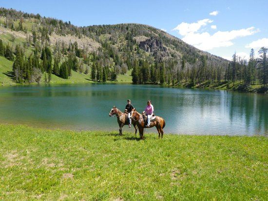Nine Quarter Circle Ranch: View on one of our all-day rides!