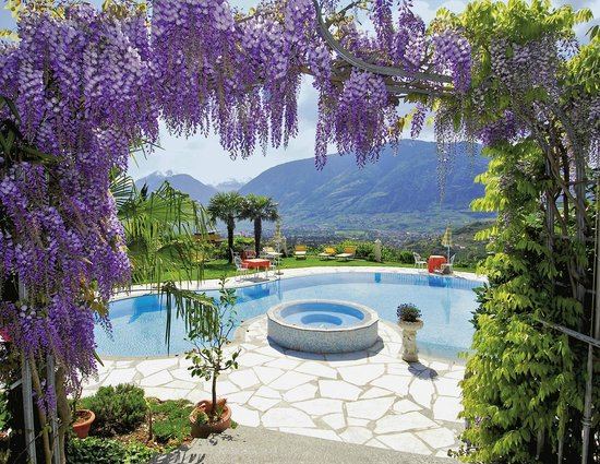 Hotel Lagrein: Blick zum Pool