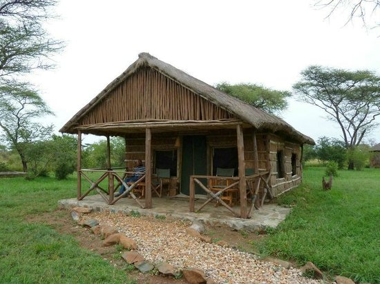 Ikoma Safari Camp: lodge