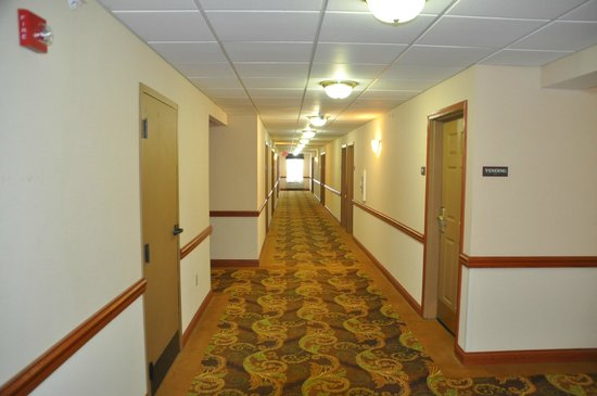 Country Inn & Suites By Carlson, Louisville South : Hallway Third Floor