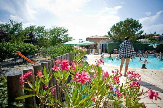 Camping Indigo Forcalquier : Piscine