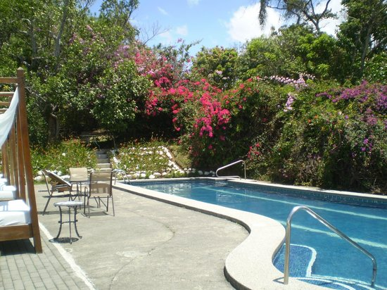 Hotel Desire Costa Rica: 1 of 2 pools on property