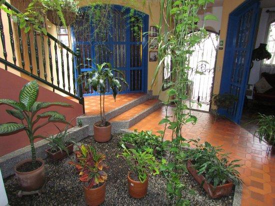 Hotel Habana Vieja: Jardín Interno
