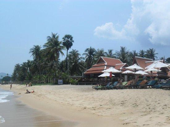 Samui Buri Beach Resort: hotel vue de la plage