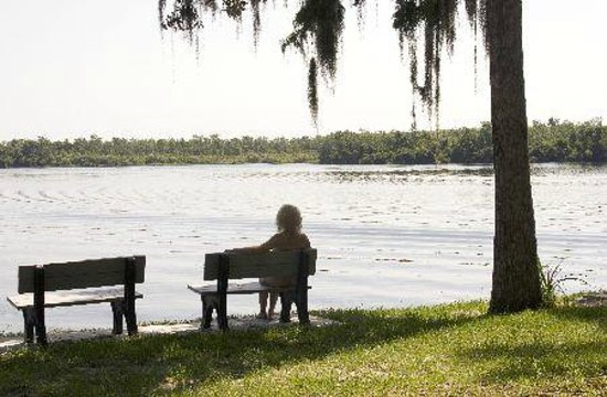Cypress Cove Nudist Resort: Relax at the Lakefront