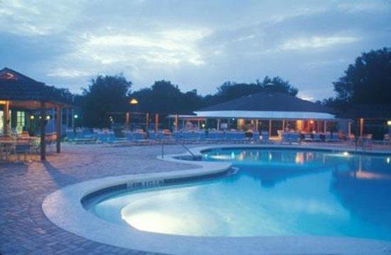 Campsite - Picture of Cypress Cove Nudist Resort
