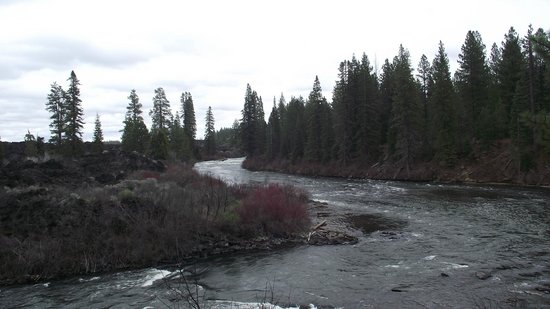 Trail to Benham Falls: Can't see Lava Butte!