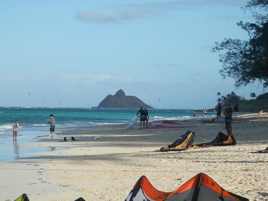 Manu Mele Bed and Breakfast : Kite al Kailua Beach Park