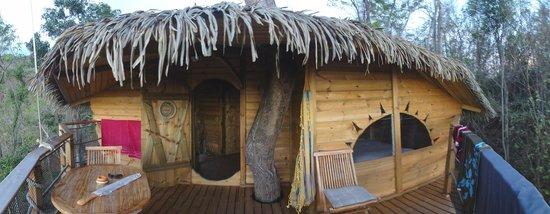Habitation Getz: Baumhausansicht