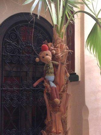Riad Dar Anika: Monkey on a palm