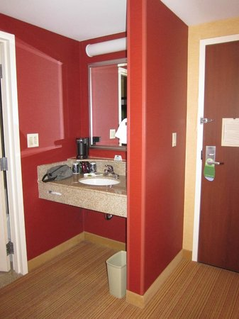 Courtyard by Marriott Chicago Downtown/Magnificent Mile: Vanity