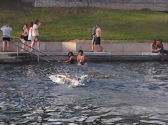 Zilker Metropolitan Park : Pool area