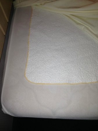 Princess Bayside Beach Hotel: cloth wee wee pad under sheet...with hair (not ours)