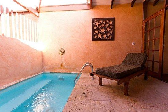 True Blue Bay Boutique Resort: Villa Pool