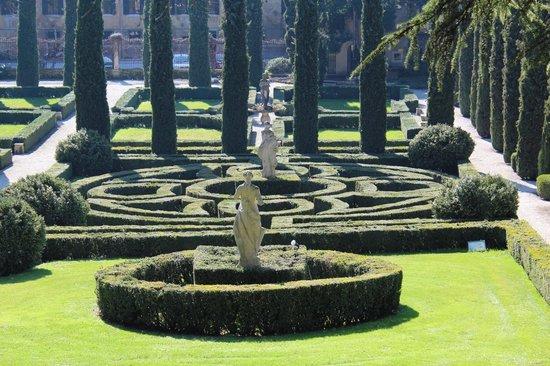 Maze at giardini giusti bild von palazzo giardino giusti verona