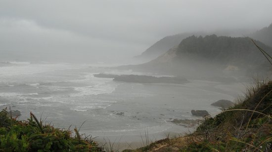 Foggy Picture Of Oregon Coast Oregon Tripadvisor
